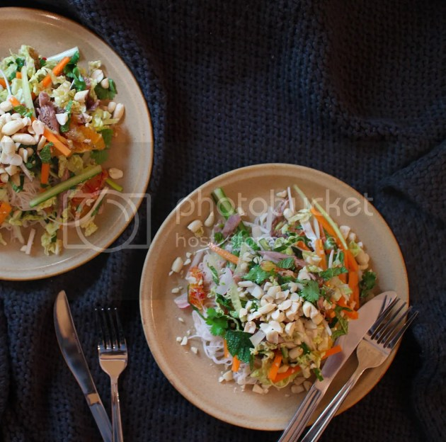 photo Blood Orange Noodle Salad with Duck or Turkey 1_zpsd9op4uks.jpg