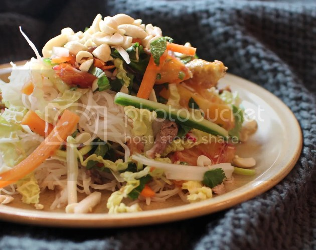 photo Blood Orange Noodle Salad with Duck or Turkey 7_zpszwpvhphh.jpg