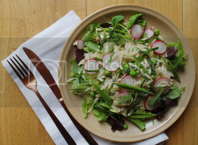 photo Spring Green Pasta Salad  2_zpsyeybcqgu.jpg