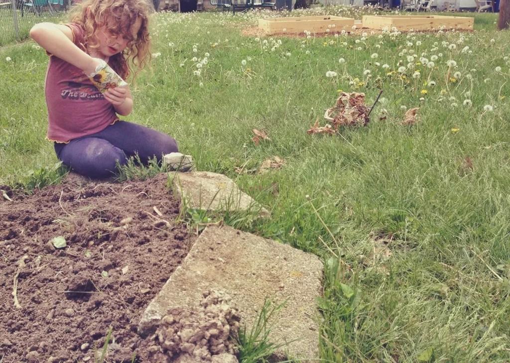 planting a garden