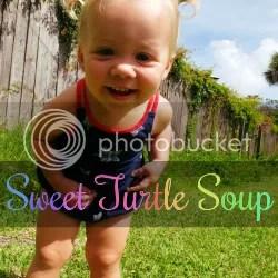 Sweet Turtle Soup