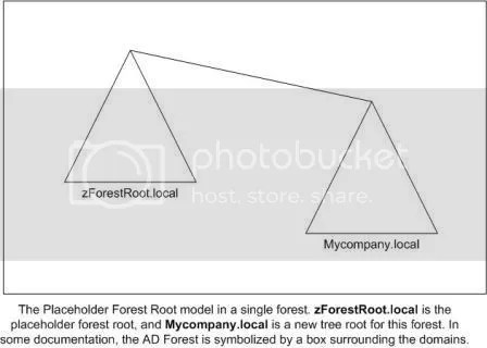 Placeholder Forest Root Domain