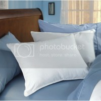 Restful Nights Trillium Gel Fiber Standard Polyester Hotel