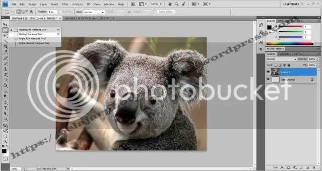 Belajar Photoshop Seleksi  Menggunakan Quick Mask