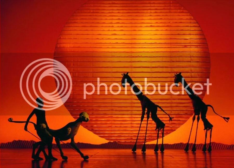 photo el-rey-leon-guepardo-jirafas-foto-catherine-ashmore_zpse37081c8.jpg