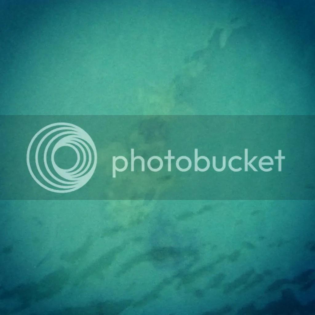 photo IMG_20140529_165637_zpsz1glrh4f.jpg