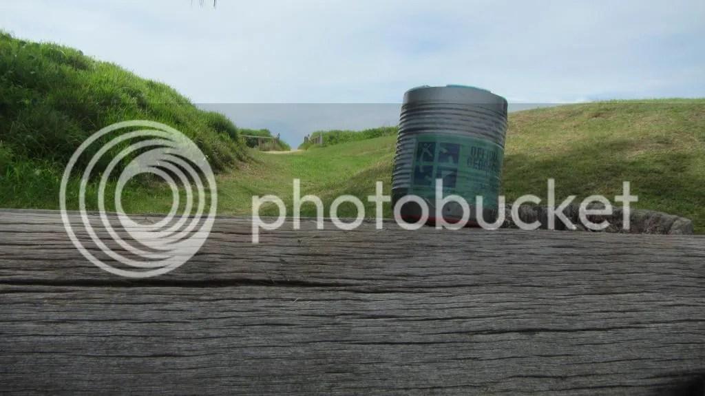 photo 11 Curl Curl Beach_zpsq82weg3v.jpg