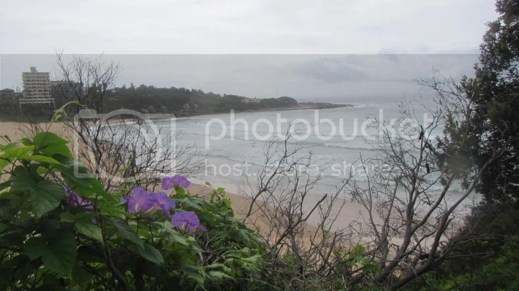 photo 3 Queenscliffe Headland_zps0iprxiju.jpg