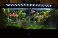 New custom LEDs in the making - The Planted Tank Forum