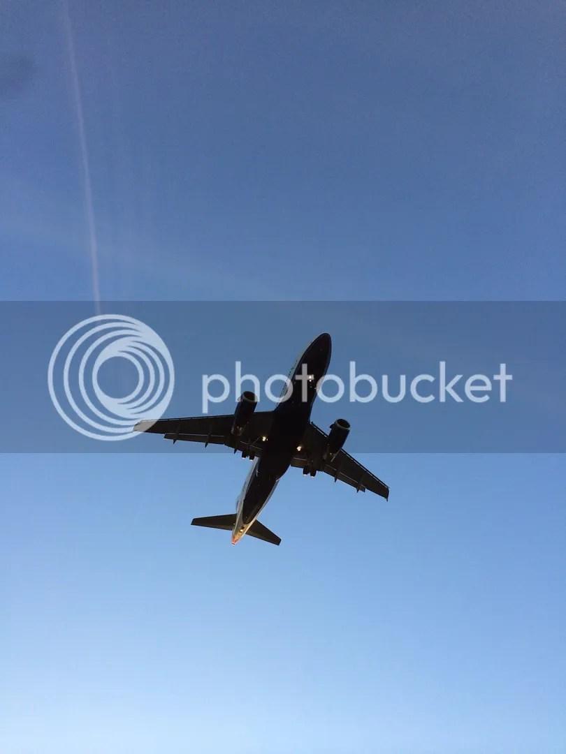 plane flying above