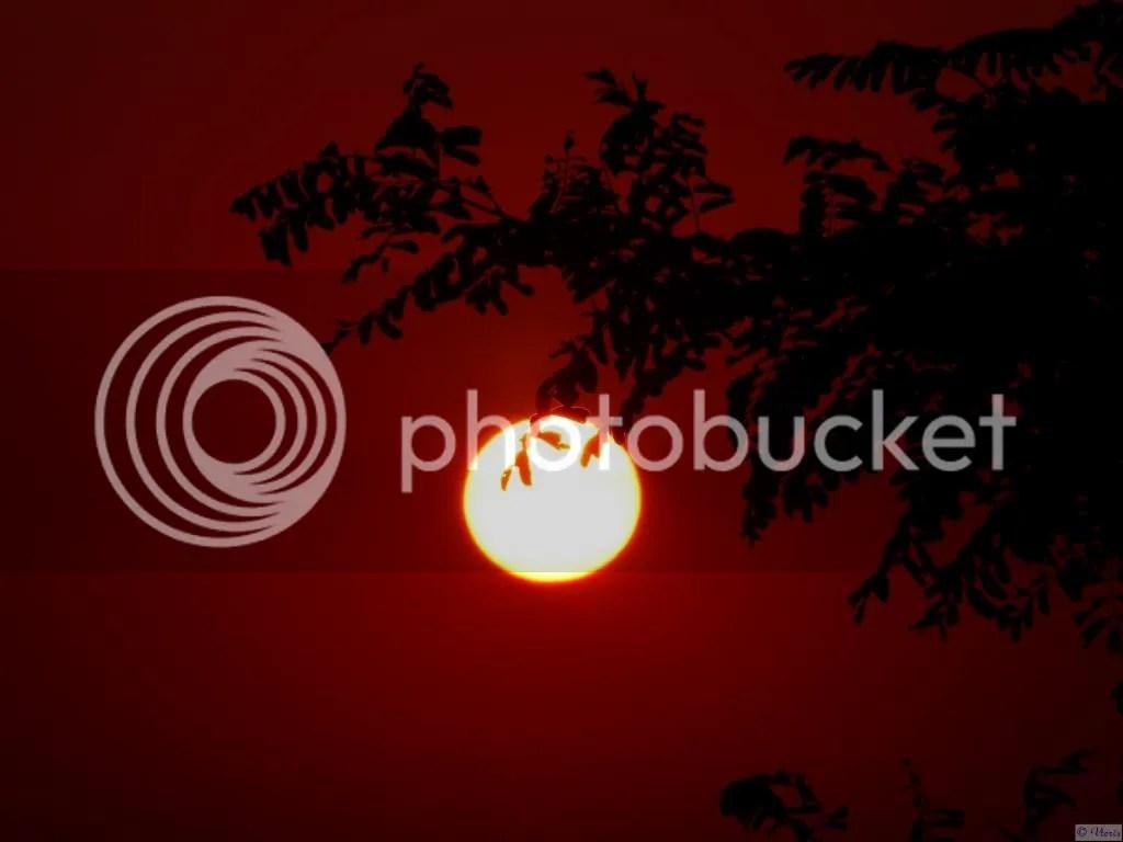 Photo P2400912.jpg