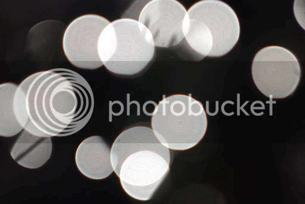 photo IMGP0004-001_zpsc1a0ac93.jpg
