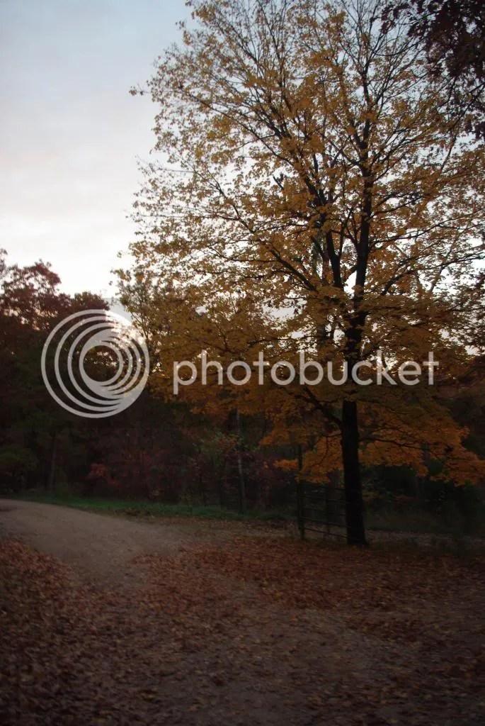photo RetreatFall2012028_zps6a4be665.jpg