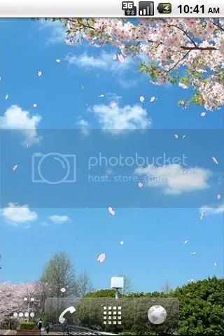 Sakura Falling Live Wallpaper New Live Wallpaper For Android