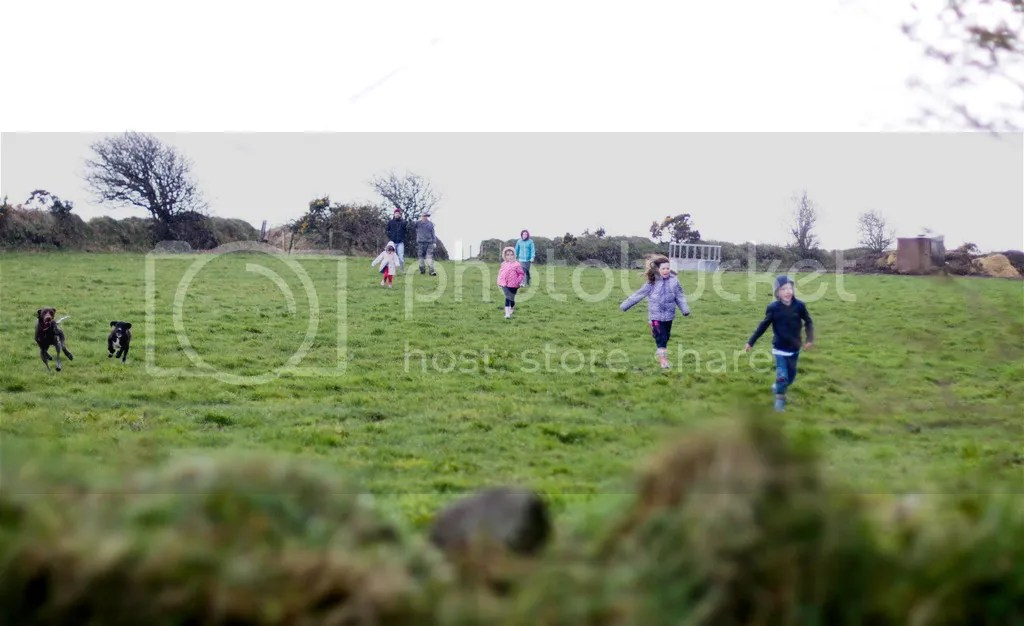 photo Field_zpsn2zbyaaq.jpg