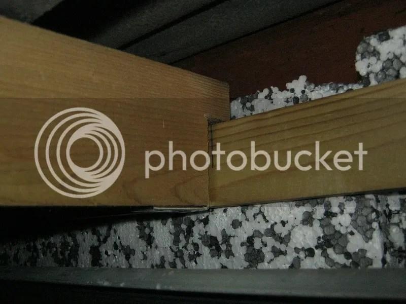 photo IMG_3262 2_zps3nx3tbuz.jpg