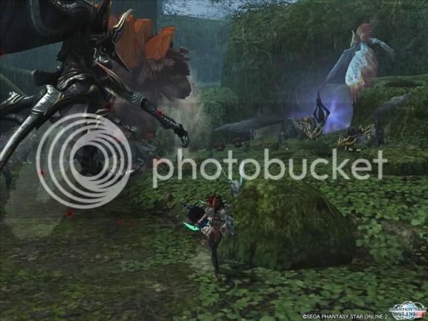 Captain Rockbear Defender Of Forest