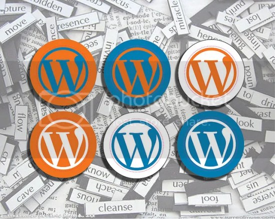 WordPress Plugins for Managing Multiple Blogs