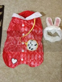 Alice In Wonderland Rabbit Costume For Dogs | www.pixshark ...
