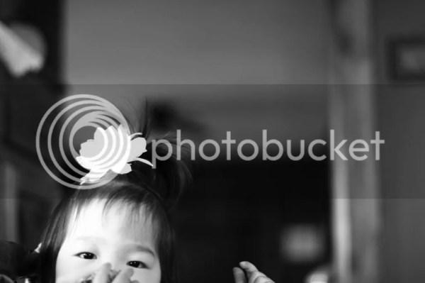 photo IMG_6354_zpsa10115a1.jpg