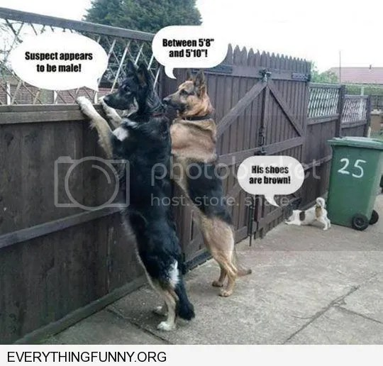 photo neighborhood watch dogs.jpg