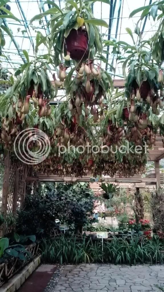 四季植物馆3