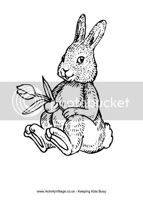 photo rabbit_and_tulip_colouring_page_460_0-1_zpsxiwhvvju.jpeg