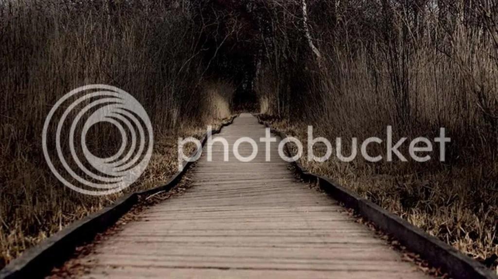 photo 2014SonyWorldPhotographyAwardsYouthcategoryAlexBoberg_zpse5f366e7.jpeg