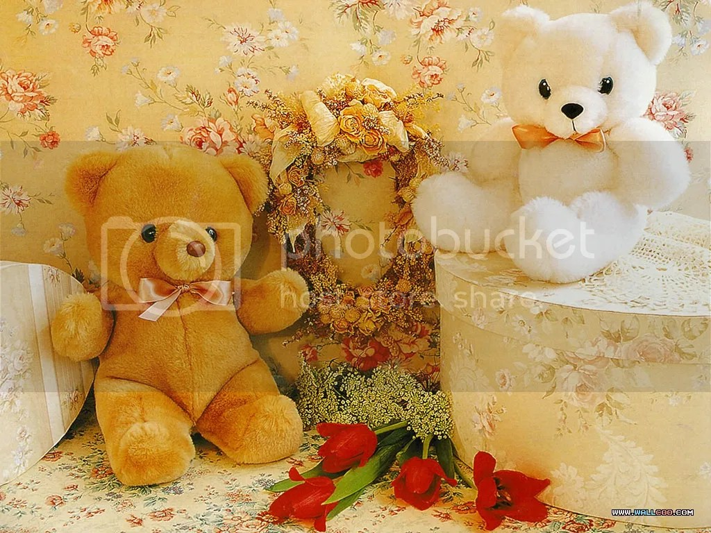 photo teddybears_zpsc468ef65.jpeg