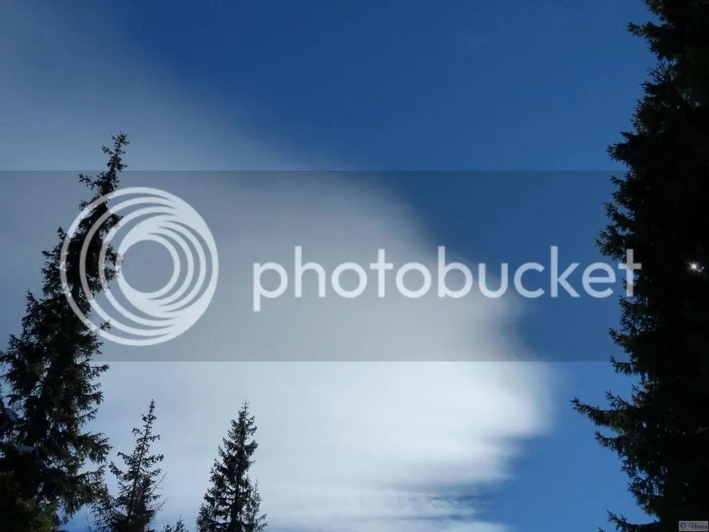 photo P1030663.jpg