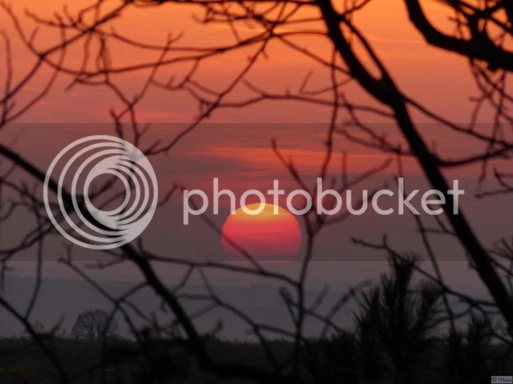 Photo P1830338.jpg