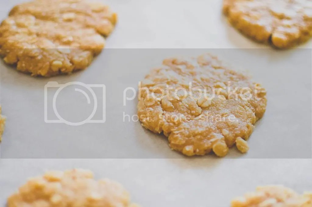 Unbaked Anzac Biscuits