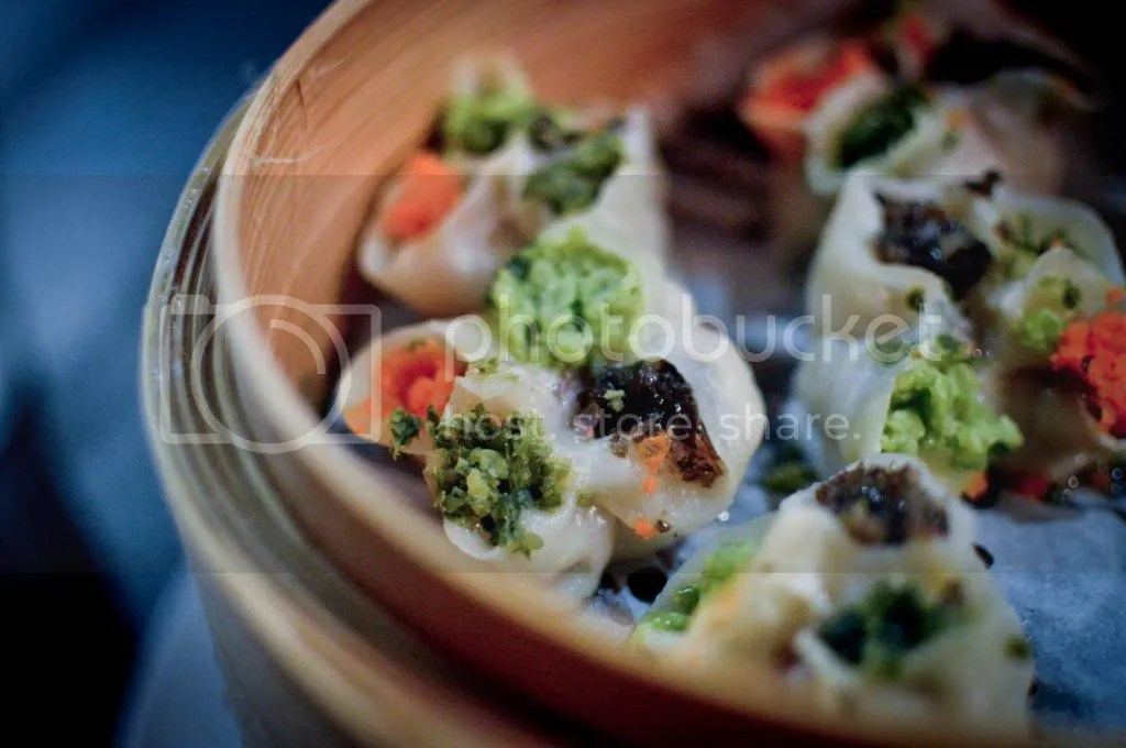 Steamed 4-Colour Dumplings with Pork and Vegetables