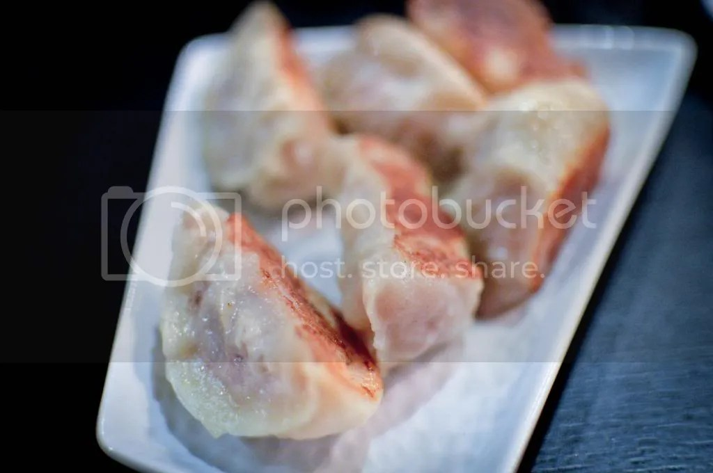Pan Fried Pork and Shrimp Dumplings