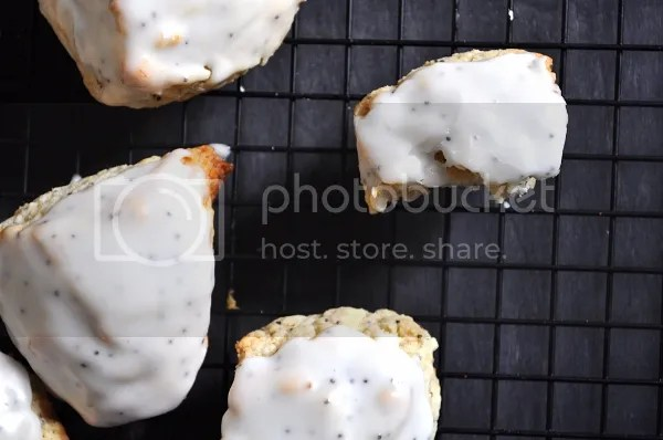mini lemon poppyseed scones