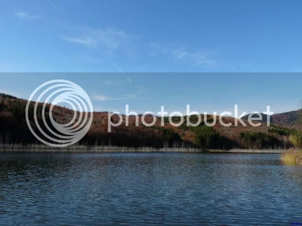 photo P296_754.jpg