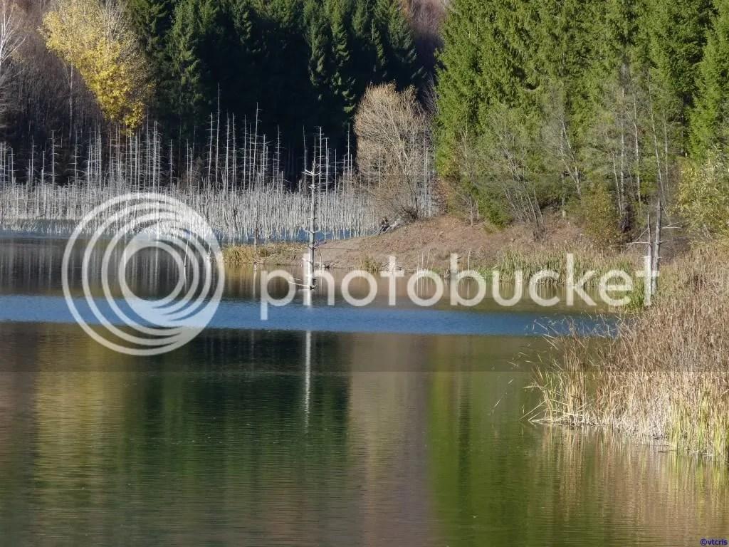 photo P296_794.jpg