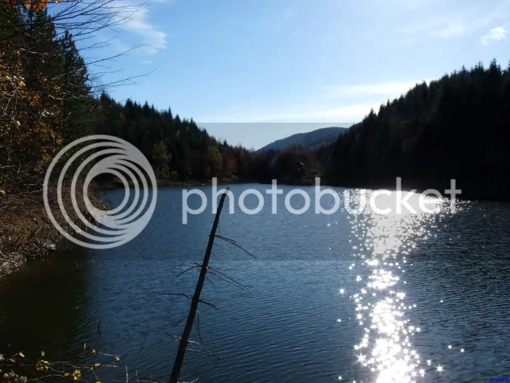 photo P296_817.jpg