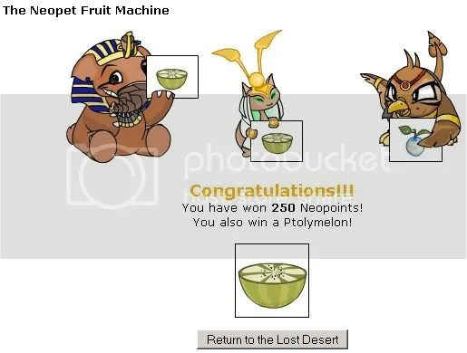 neopet fruit machine