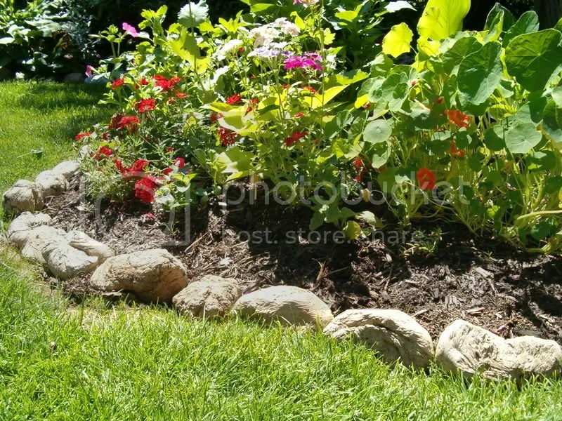 What Type Of Lawn Edging?