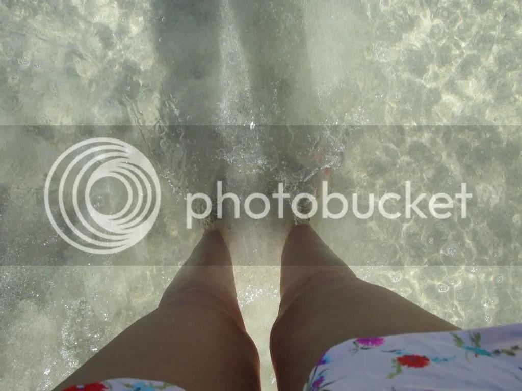 photo 11083976_10206395790434460_364770236004272795_o_zpsovc3kej3.jpg
