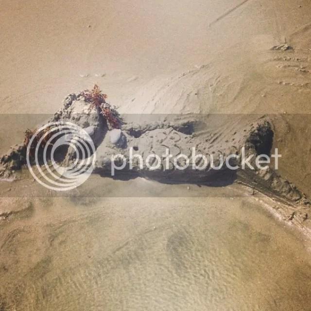 Mermaids are magnificent so I sculpted one in the sand #sand #sandsculpture #sandcastle #mermaid #underthesea #ocean #beach #myrtlebeach #seashore #seacreature #vacation #travel photo 10543637_10204576318868808_7577545180417697232_n.jpg