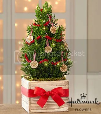 FTD True Traditions Christmas Tree by Hallmark