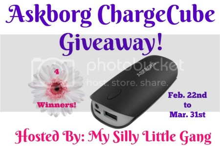 Askborg chargecube giveaway
