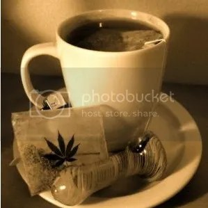 photo marijuana-tea1_zpsf486c0b8.jpg