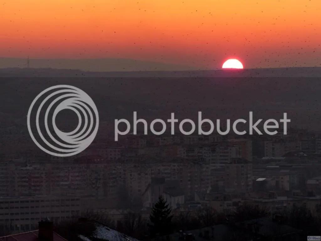 Photo P2580191_mod.jpg