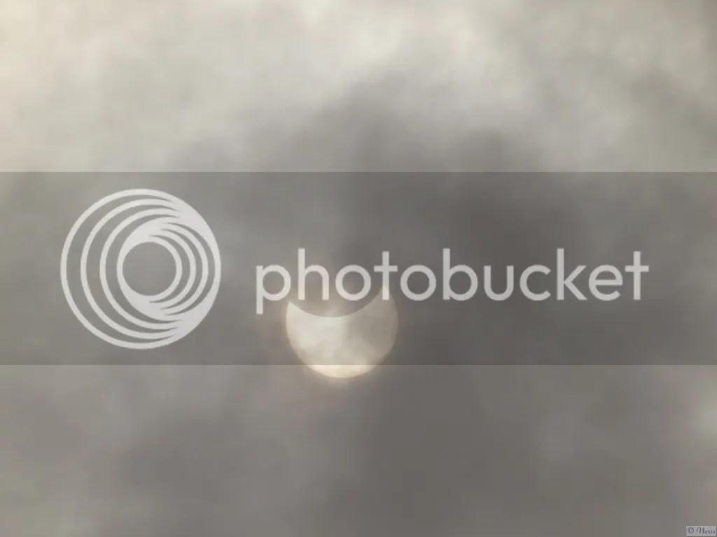 photo P2660719.jpg