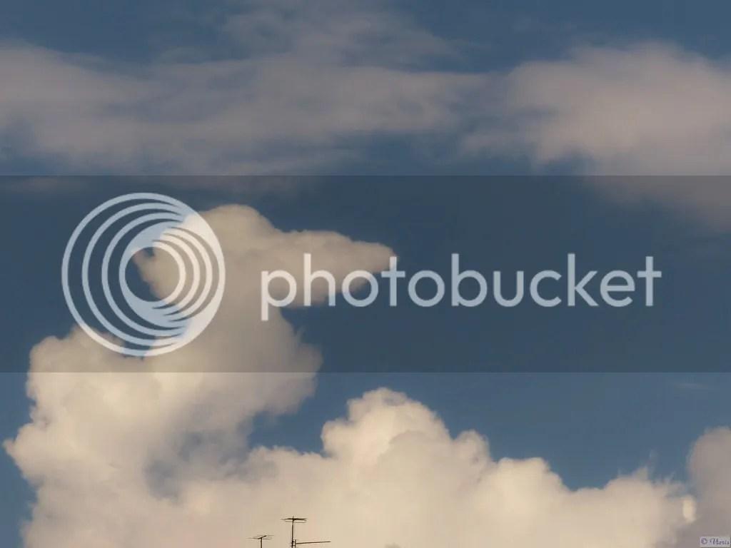 photo P2680569_mod.jpg