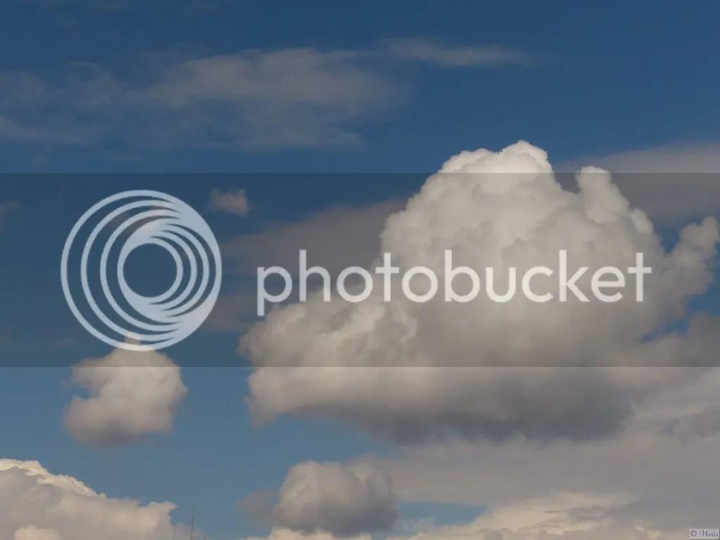 photo P2680591.jpg