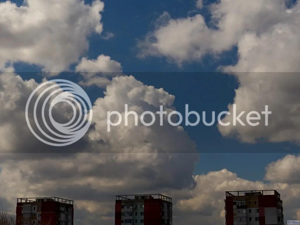 photo P2680595_mod.jpg
